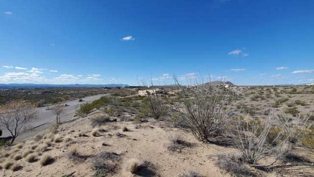 5641 Camino Escondida, Las Cruces, NM 88011 (MLS #2000769) :: Agave Real Estate Group