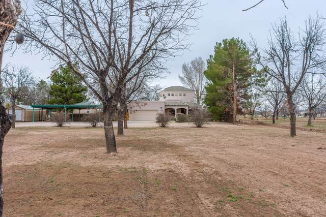 2102 Stithes Road, Mesilla, NM 88046 (MLS #2000820) :: Better Homes and Gardens Real Estate - Steinborn & Associates