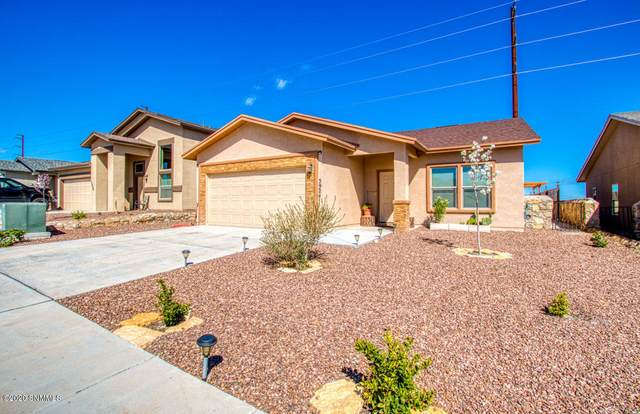 5924 Megan Street, Sunland Park, NM 88008 (MLS #2000827) :: Better Homes and Gardens Real Estate - Steinborn & Associates
