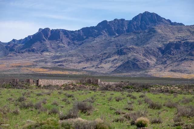 17665 SE Montezuma Road, Deming, NM 88030 (MLS #2000875) :: Arising Group Real Estate Associates