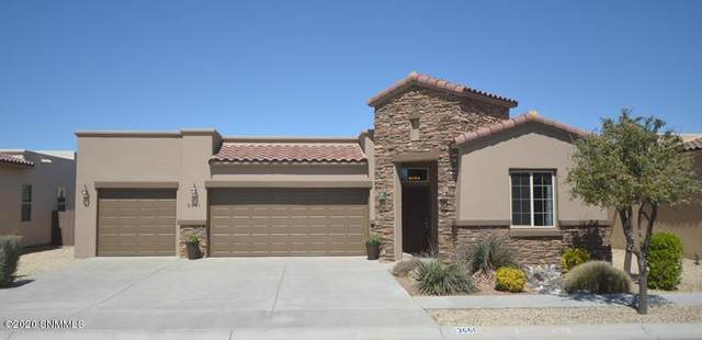 3661 Santa Sabina Avenue, Las Cruces, NM 88012 (MLS #2000884) :: Better Homes and Gardens Real Estate - Steinborn & Associates