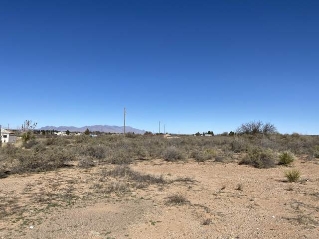116 E Lisa Drive #1, Chaparral, NM 88081 (MLS #2000888) :: Better Homes and Gardens Real Estate - Steinborn & Associates