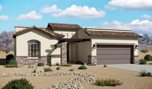 6877 Titan Road, Las Cruces, NM 88012 (MLS #2000900) :: Better Homes and Gardens Real Estate - Steinborn & Associates