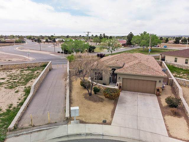 699 Sombrero Court, Las Cruces, NM 88007 (MLS #2000938) :: Better Homes and Gardens Real Estate - Steinborn & Associates