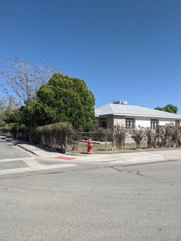 499 W. Chestnut Avenue, Las Cruces, NM 88005 (MLS #2000940) :: Better Homes and Gardens Real Estate - Steinborn & Associates