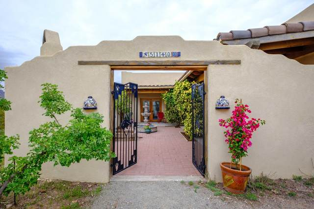 5140 Silver King Road, Las Cruces, NM 88011 (MLS #2000949) :: Better Homes and Gardens Real Estate - Steinborn & Associates