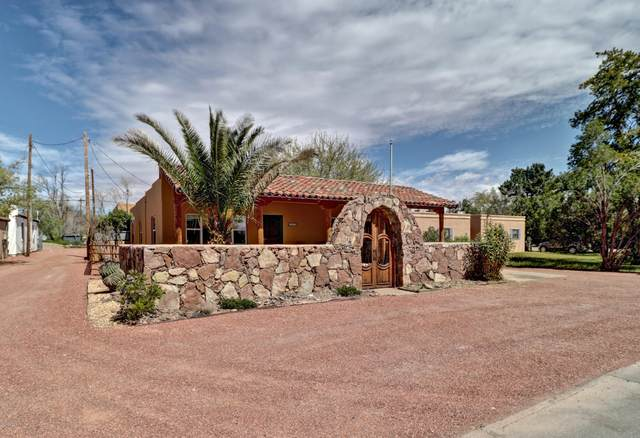 310 Manso Avenue, Las Cruces, NM 88005 (MLS #2000990) :: Better Homes and Gardens Real Estate - Steinborn & Associates
