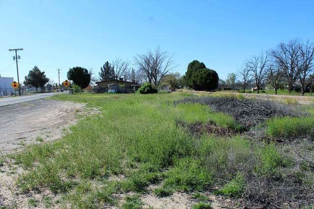 371 Old Highway 292, Las Cruces, NM 88005 (MLS #2000996) :: Better Homes and Gardens Real Estate - Steinborn & Associates