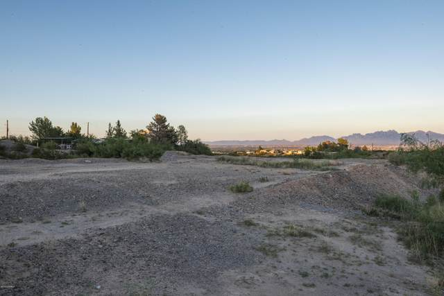 000 Lark Spur Way, Las Cruces, NM 88007 (MLS #2000999) :: Better Homes and Gardens Real Estate - Steinborn & Associates
