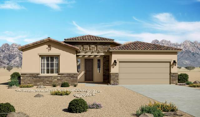 3728 Santa Rosa Avenue, Las Cruces, NM 88012 (MLS #2001023) :: Better Homes and Gardens Real Estate - Steinborn & Associates