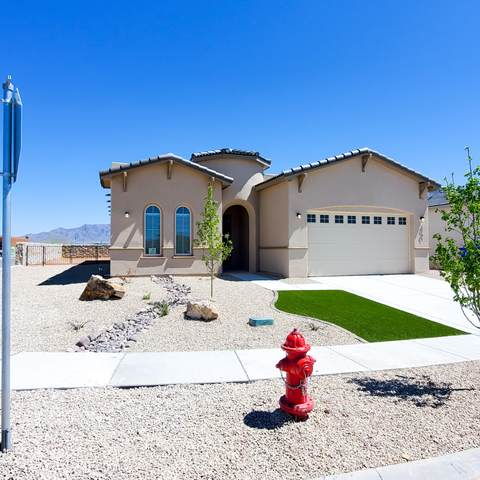 3701 Golden Echo Loop, Las Cruces, NM 88012 (MLS #2001036) :: Better Homes and Gardens Real Estate - Steinborn & Associates