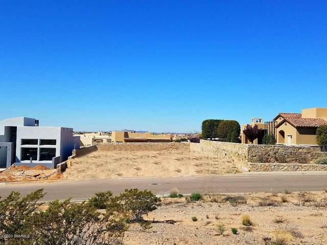 2519 Pagosa Hills Avenue, Las Cruces, NM 88011 (MLS #2001043) :: Agave Real Estate Group