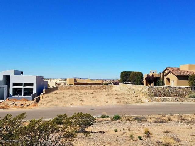 2519 Pagosa Hills Avenue, Las Cruces, NM 88011 (MLS #2001043) :: Arising Group Real Estate Associates