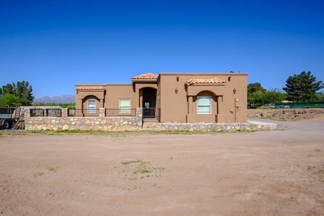 151 Canal Bend Road, Mesilla Park, NM 88047 (MLS #2001150) :: Better Homes and Gardens Real Estate - Steinborn & Associates