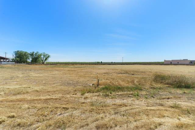 8354 Green Run Road, La Mesa, NM 88044 (MLS #2001242) :: Better Homes and Gardens Real Estate - Steinborn & Associates