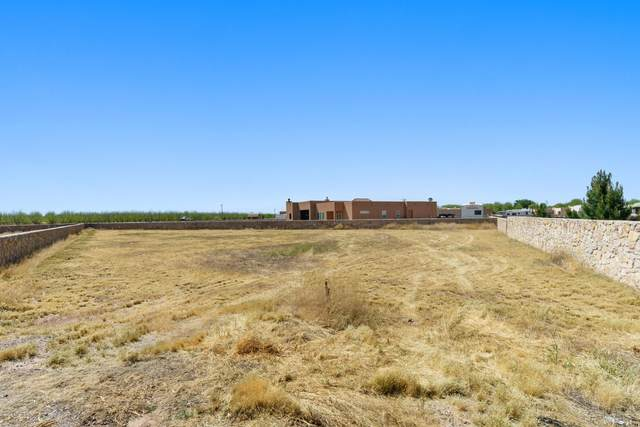 430 Rancho Verde Court, La Mesa, NM 88044 (MLS #2001254) :: Agave Real Estate Group