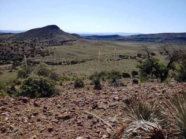 Lot 3 Berrenda Creek Ranch 1A, Hillsboro, NM 88042 (MLS #2001262) :: Agave Real Estate Group