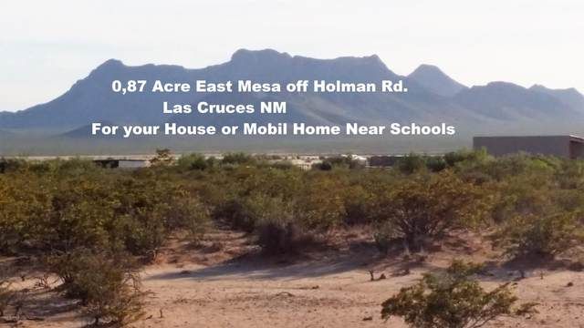 0 Opal Place, Las Cruces, NM 88012 (MLS #2001293) :: Better Homes and Gardens Real Estate - Steinborn & Associates