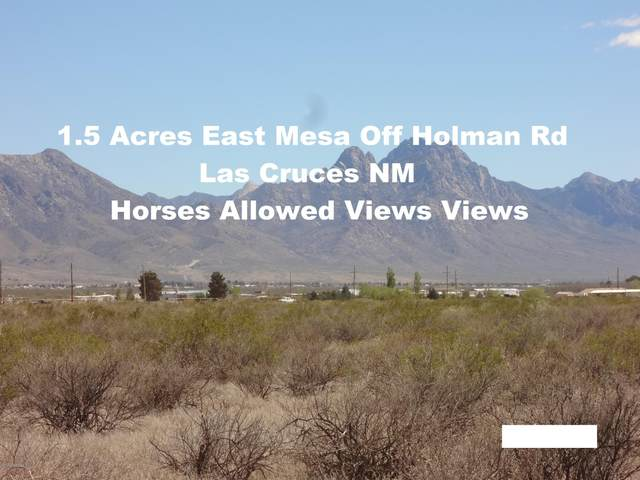 00 Tasmania Avenue, Las Cruces, NM 88012 (MLS #2001296) :: Better Homes and Gardens Real Estate - Steinborn & Associates
