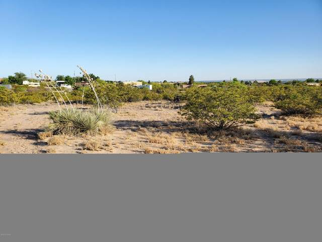 1584 Pelicano Trail, Las Cruces, NM 88012 (MLS #2001302) :: Agave Real Estate Group