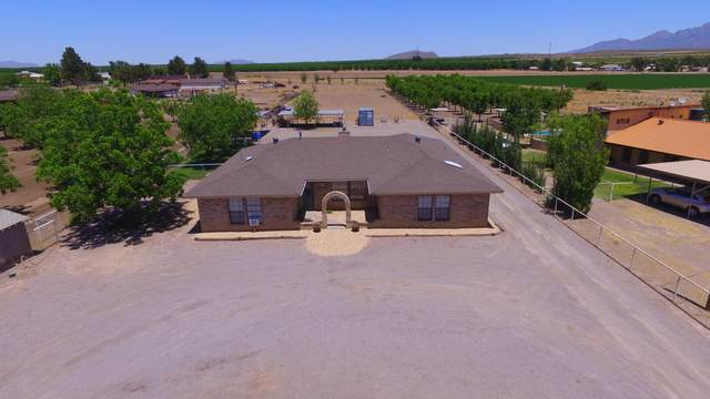 701 E Organ Road, Mesilla Park, NM 88047 (MLS #2001363) :: Better Homes and Gardens Real Estate - Steinborn & Associates