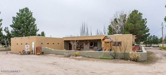 2526 Snow Road, Las Cruces, NM 88005 (MLS #2001375) :: Better Homes and Gardens Real Estate - Steinborn & Associates