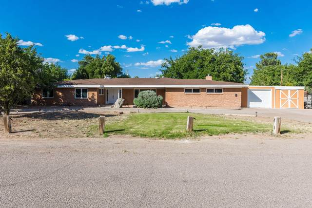 2538 San Andres Drive, Las Cruces, NM 88007 (MLS #2001387) :: Arising Group Real Estate Associates