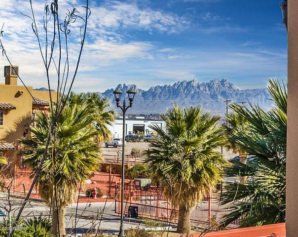 1320 Avenida De Mesilla #211, Las Cruces, NM 88005 (MLS #2001394) :: Better Homes and Gardens Real Estate - Steinborn & Associates