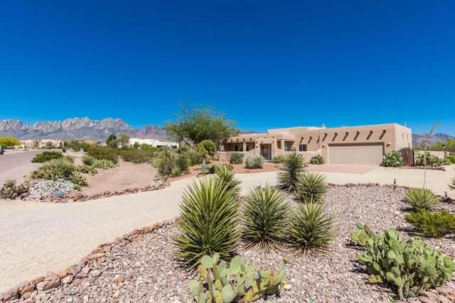 8904 Silk Oak Court, Las Cruces, NM 88011 (MLS #2001427) :: Better Homes and Gardens Real Estate - Steinborn & Associates