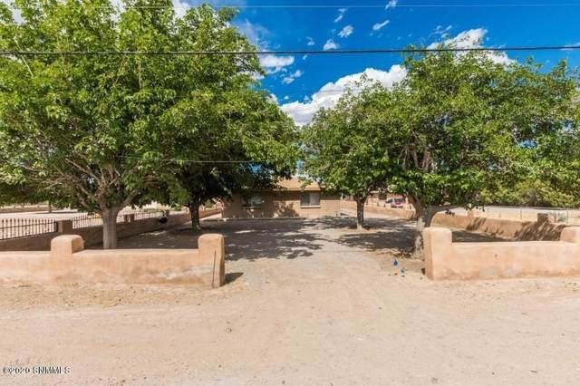8845 S Main Street, Mesilla Park, NM 88047 (MLS #2001497) :: Arising Group Real Estate Associates