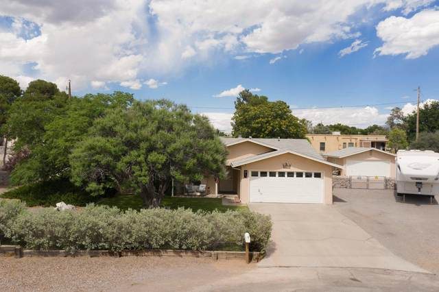 4690 Del Rose Court, Las Cruces, NM 88007 (MLS #2001514) :: Better Homes and Gardens Real Estate - Steinborn & Associates