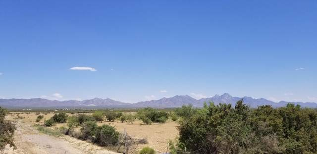 10100 County Rd D-065, Las Cruces, NM 88012 (MLS #2001532) :: Better Homes and Gardens Real Estate - Steinborn & Associates
