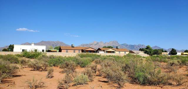 6700 Peachtree Hills Road Road, Las Cruces, NM 88012 (MLS #2001539) :: Better Homes and Gardens Real Estate - Steinborn & Associates