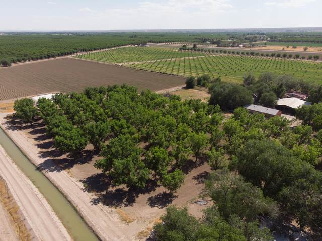 767 W Ohara Road, Anthony, NM 88021 (MLS #2001541) :: Better Homes and Gardens Real Estate - Steinborn & Associates