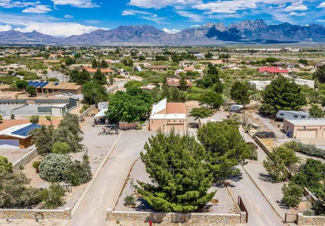 5986 San Augustin Drive, Las Cruces, NM 88012 (MLS #2001547) :: Agave Real Estate Group
