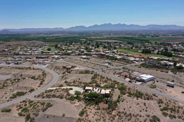 1518 Arco De Goya #25, Las Cruces, NM 88007 (MLS #2001594) :: Better Homes and Gardens Real Estate - Steinborn & Associates