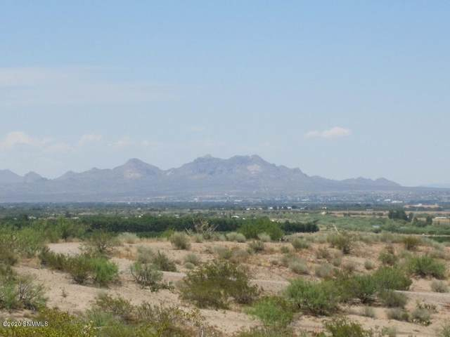 5795 Vista Verde Road, Las Cruces, NM 88005 (MLS #2001616) :: Better Homes and Gardens Real Estate - Steinborn & Associates