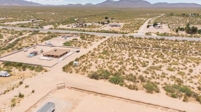 1216 Enchantment Drive, Chaparral, NM 88081 (MLS #2001680) :: Better Homes and Gardens Real Estate - Steinborn & Associates