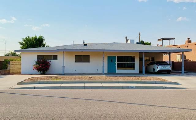 500 El Prado Avenue, Las Cruces, NM 88005 (MLS #2001708) :: Better Homes and Gardens Real Estate - Steinborn & Associates