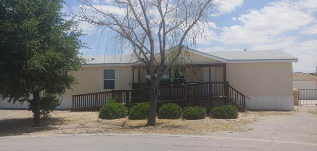 2993 Daffodil Lane, Las Cruces, NM 88007 (MLS #2001718) :: Arising Group Real Estate Associates