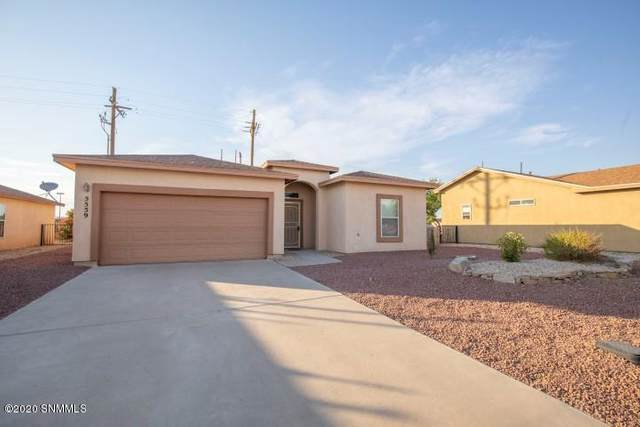 5559 Patagonia Drive, Las Cruces, NM 88011 (MLS #2001737) :: Agave Real Estate Group