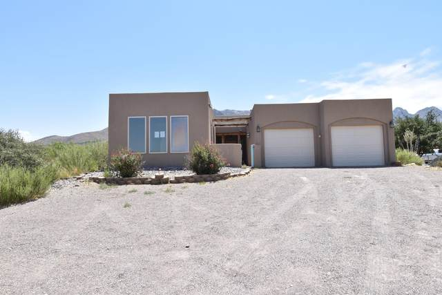 4630 Mayfly Road, Las Cruces, NM 88011 (MLS #2001742) :: Better Homes and Gardens Real Estate - Steinborn & Associates