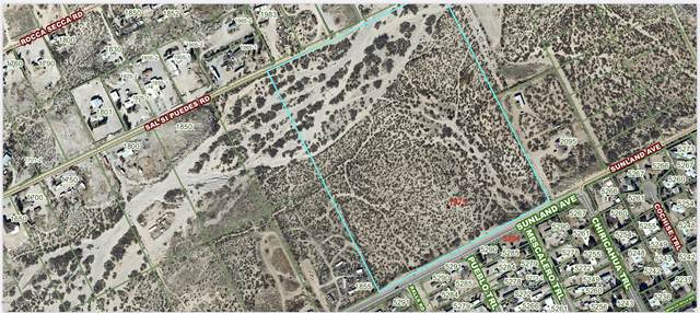 1975 Sunland Avenue, Las Cruces, NM 88012 (MLS #2001744) :: Better Homes and Gardens Real Estate - Steinborn & Associates