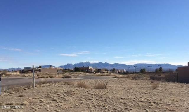 0000 Cassatt Place, Las Cruces, NM 88007 (MLS #2001750) :: Better Homes and Gardens Real Estate - Steinborn & Associates
