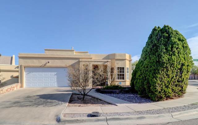 649 Cielo Vista Court, Las Cruces, NM 88005 (MLS #2001771) :: Better Homes and Gardens Real Estate - Steinborn & Associates