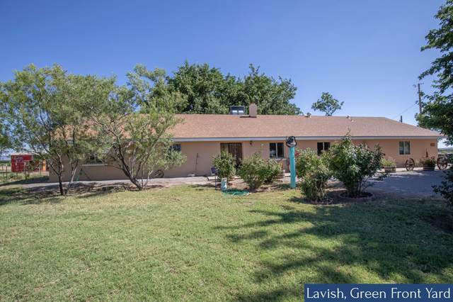 1108 Lister Drive, La Mesa, NM 88044 (MLS #2001806) :: Better Homes and Gardens Real Estate - Steinborn & Associates