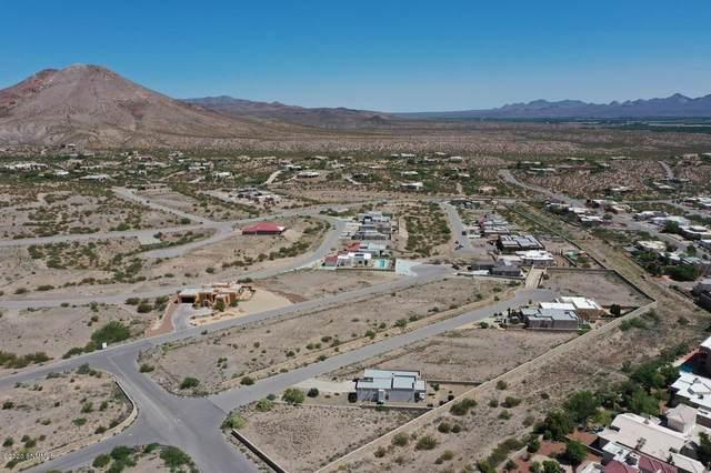 0023 Arco De Goya, Las Cruces, NM 88007 (MLS #2001816) :: Las Cruces Real Estate Professionals