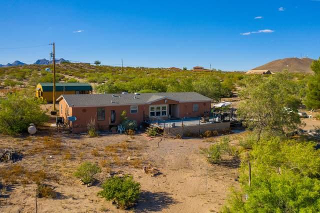 2445 Webb Rd Road, Las Cruces, NM 88012 (MLS #2001822) :: Arising Group Real Estate Associates