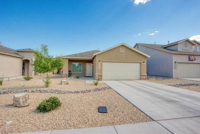 3059 San Elizario Court, Las Cruces, NM 88007 (MLS #2001823) :: Arising Group Real Estate Associates
