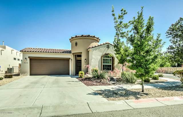 3645 Santa Sabina Avenue, Las Cruces, NM 88012 (MLS #2001829) :: Better Homes and Gardens Real Estate - Steinborn & Associates